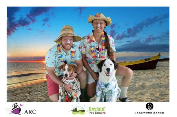 Hawaiian dogs